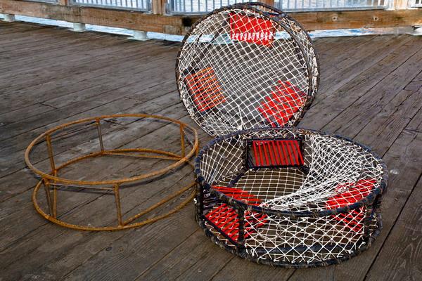 Traps Shellfish | Neptune Marine Products